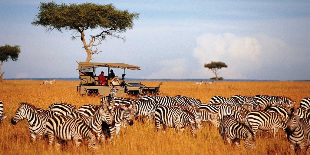 Kenya Safari Masai Mara